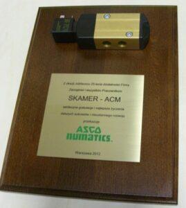 Dyplom grawerowany w mosiądzu złotym umieszczony na desce drewnianej