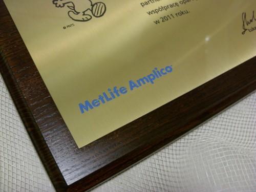 Dyplom grawerowany w mosiądzu złotym na desce dębowej
